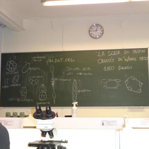 Basic-course-2021-12